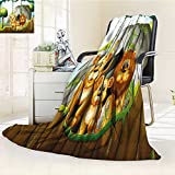 YOYI-HOME Cotton Thermal Duplex Printed Blanket,Forest Lion Family in The Jungle Woods King Zoo Nursery Apricot Chocolate Hunter Green Soft and Breathable Cotton/W59 x H79