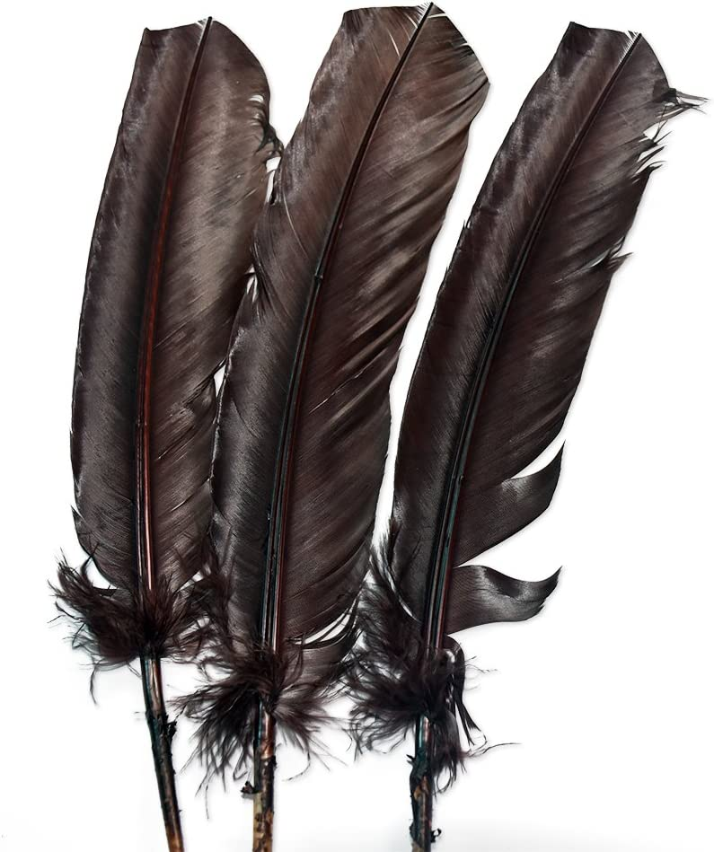 Everyshine 120 Pcs Turkey Quill Feathers 10-12 inches Purple
