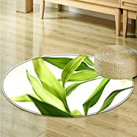 Print Area rug Green bamboo leaves Perfect for any Room, Floor Carpet -Round 31