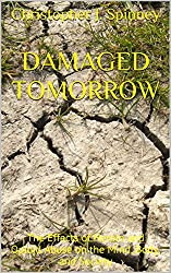 Damaged Tomorrow: The Effects of Heroin and Opioid Abuse on the Mind, Body, and Society (Heroin Recovery is Possible Book 4)