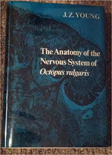 The Anatomy Of The Nervous System Of Octopus Vulgaris J Z Young
