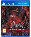 Anima : Gate Of Memories - The Nameless Chronicles (Ps4)