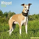Whippet Calendar 2018 - Dog Breed Calendar - Premium Wall Calendar 2017-2018