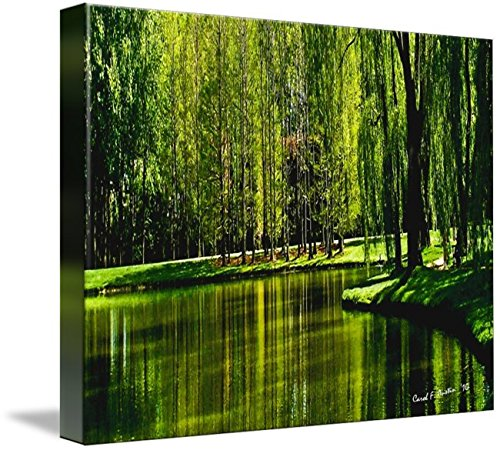 Wall Art Print entitled Weeping Willow Tree Ribbons by Carol F Austin