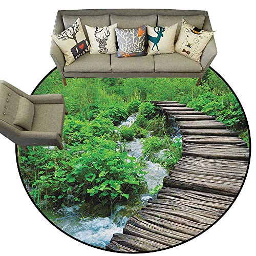 - Forest,Living Room Round Rugs Path and The Waterfall Board in Croatia Cascade Garden Lake Fence Peaceful View D78 Home Decor Carpets Kids Play Rug
