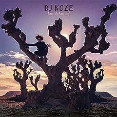 DJ Koze Bonfire cover