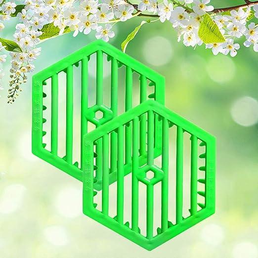 Danigrefinb Suministros para Apicultura Hexagon Queen Bee Pin ...