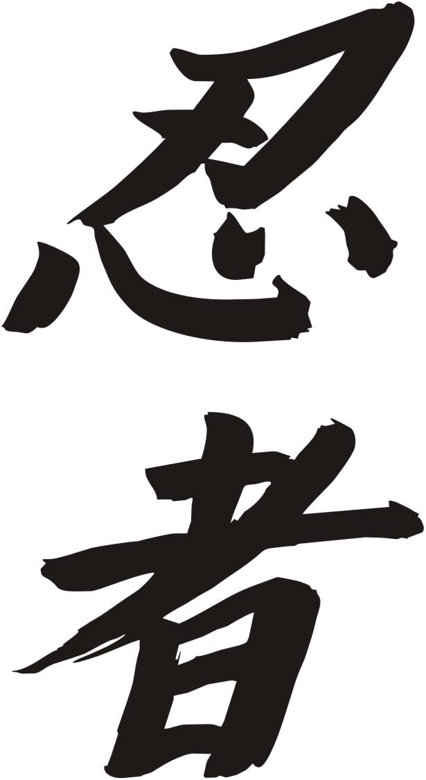 Ninja Kanji Japanese Lettering Decal sticker Multiple colors (Baby Blue)
