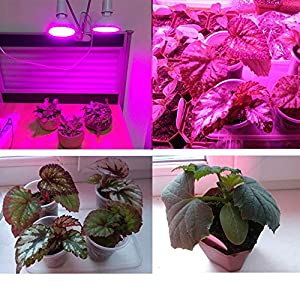 LED Grow Light 400 LED with Desk Clip 360 Degree Flexible Gooseneck Growing Lamp for Plants Flowers Indoor Hydroponics Greenhouse Garden Plant Grow Lights for Vegetables
