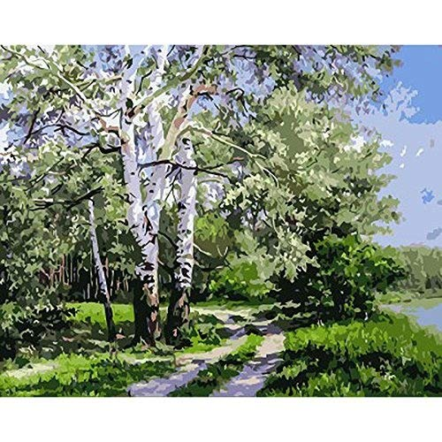 JynXos Frameless Poplar Forest Diy Paintnig By Numbers Modern Wall Picture Landscape Drawing Painting By Numbers For Home Decoration