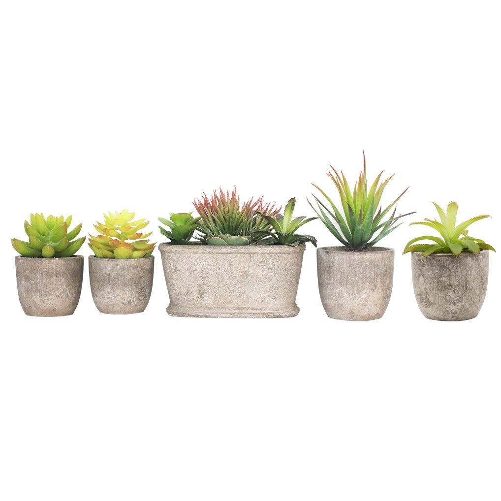 Binen 5 Pezzi Piante artificiali dei succulenti, mini piante aromatiche artificiali messe in vaso di succulente in vaso con i vasi per la decorazione domestica del giardino