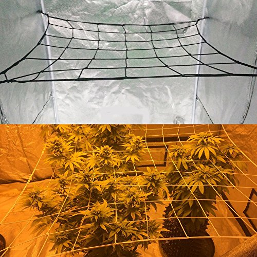 Cheap GROWNEER Flexible Net Trellis for Grow Tents, Fits 4×4 and more size, Includes 4 Steel Hooks, 36 Growing Spaces