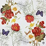 Luncheon Napkins, Alink Designer Vintage Paper Napkins Serviettes Printing Flowers Butterfly for Weeding, Dinner and Party, 20 Count