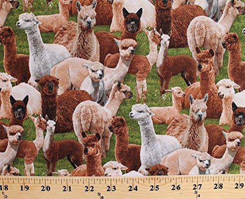 Cotton Farm Animals Llamas Alpacas South America Green Cotton Fabric Print by Yard (445-green)