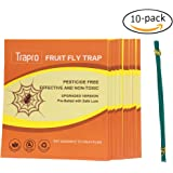 Trapro Fruit Fly Traps Prebaited with Safety Pheromone Lures - 10 Pack