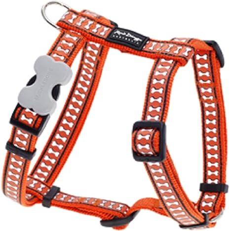 Red Dingo Arnés reflectante naranja XLarge para perro: Amazon.es ...