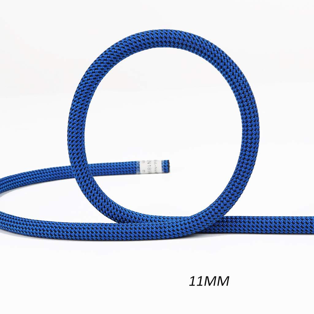 TLMYDD Ligne de Vie Statique pour Corde d'escalade Corde de Chute 11   12mm Cordes (Taille   12MM 10M) 11MM 60M