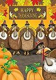 Toland Home Garden Turkey Photobomb 28 x 40 Inch Decorative Funny Happy Thanksgiving Bird House Flag Review