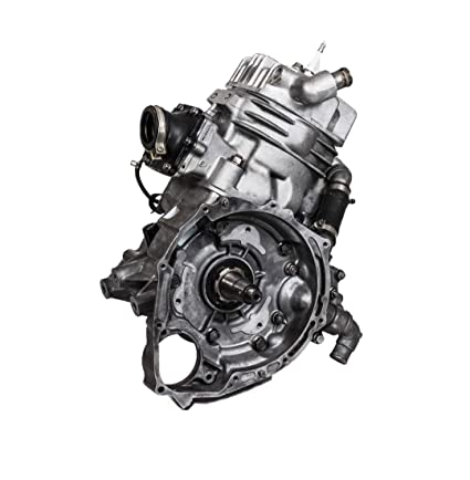 Amazon com: Polaris 400 2-Stroke Engine Motor Rebuilt: Automotive