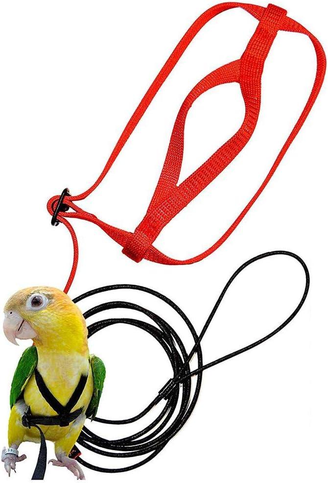 Arnés De Aves Correa De Tracción De Liberación del Loro Cuerda Saliente Correa De Entrenamiento del Loro