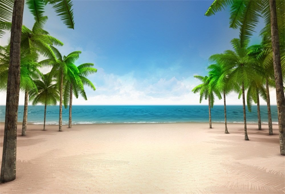 Amazon.com : Lfeey 9X6Ft Seaside Wedding Photo Booth Backdrop ... History <b>Tropical beaches.</b> Amazon.com : LFEEY 9x6ft Seaside Wedding Photo Booth Backdrop ....</p>