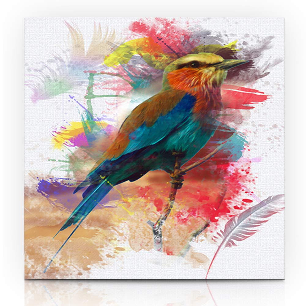 CANVAS Lilac-Breasted Roller Art print POSTER