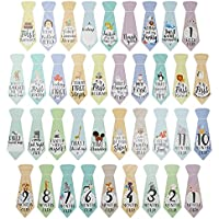 """38 Baby Milestone""""First Year"""" Necktie Stickers – Best Baby Shower Gift for Newborn Baby Boys & Girls – Onesie Ties for Monthly Age Markers & Special Moments – Original Sticker Set from Cozy Hedgehog"""