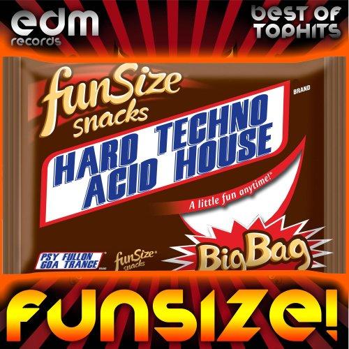 Funsize hard techno acid house psychedelic for Acid house techno