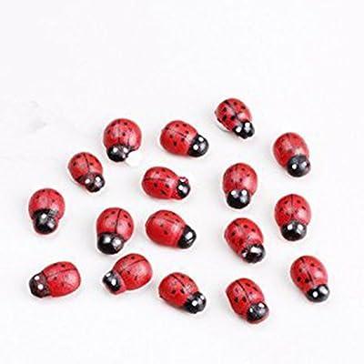 144 mariquitas adhesivas pequeñas 15 mm de madera decoración adornos: Hogar