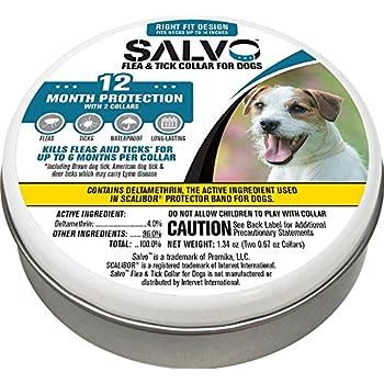 Amazon Com Salvo Flea Amp Tick Collar For Dogs 2pk Small