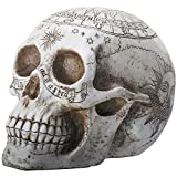 YTC 7.75 Inch Resin Skull with Astrology