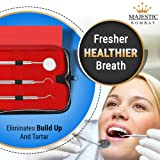 Dental Hygiene Tool Kit - Includes Stainless