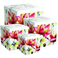 Endless Art US Sonia EZ Gift Box. Easy to Assemble and No Glue Required.