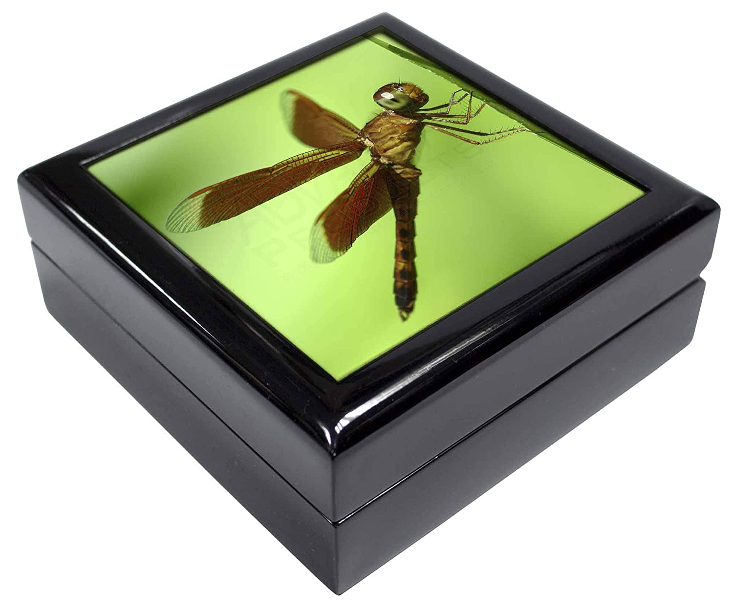 Dragonflies IDR-2JB Close-Up Dragonfly Print Keepsake//Jewellery Box Christmas