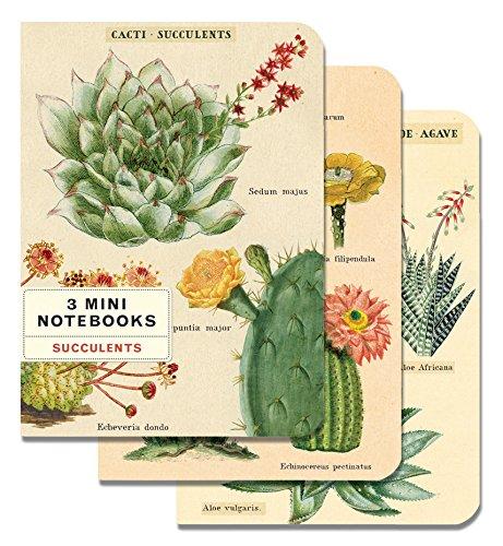 Cavallini Papers & Co., Inc. Succulents Mini Notebooks 4 x 5.5