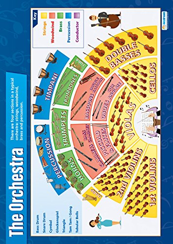 """Instrument Family Posters (The Orchestra Poster