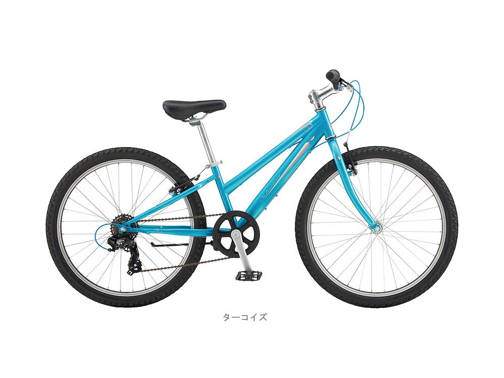 シュウィン(SCHWINN) 子供用自転車 SCW ELLA 24 ターコイズ2018 ターコイズ B01MCWLFTP