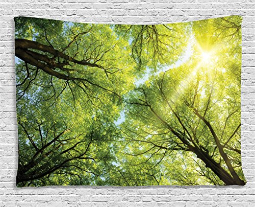 Ambesonne Farm House Decor Collection, The Warm Spring Sun Shining Through the Canopy of Tall Beech Trees Romantic Scene, Bedroom Living Room Dorm Wall Hanging Tapestry, 80 X 60 Inches, Green Yellow