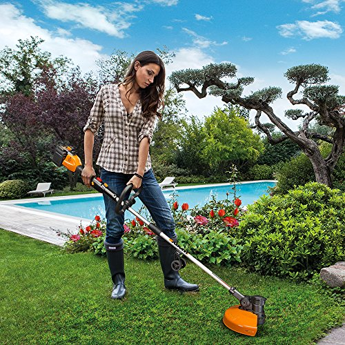 Worx Cordless Grass in-Line Edging, Feed, Charger, 2 Batteries