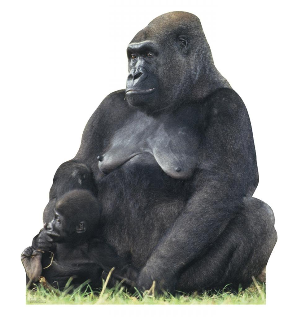 Mother & Child Gorillas - Advanced Graphics Life Size Cardboard Standup