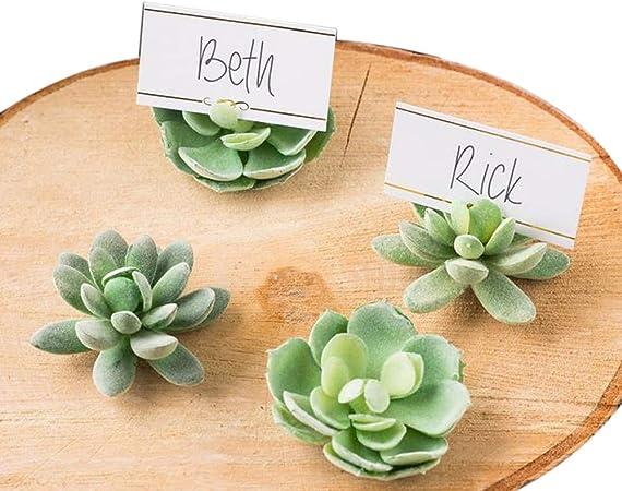 Segnaposto Matrimonio Naturale.10 Pezzi Segnaposto Piante Grass Giardino Tema Naturale Matrimonio
