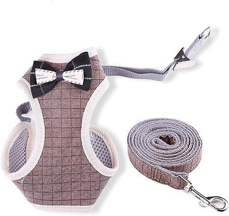 WINNER POP Puppy Mesh Vest Arnés, Medianas Mascotas, Cinturones de ...