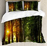 Ambesonne Nature Duvet Cover Set Queen Size, Fresh Idyllic Morning Scenery Woods with Rising Sun Peaceful Countryside, Decorative 3 Piece Bedding Set with 2 Pillow Shams, Green Marigold Beige