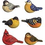 Carson Home Accents CHA57119 Songbird Classic Mini Bird Figurine, Set of 6 mini bird figurines