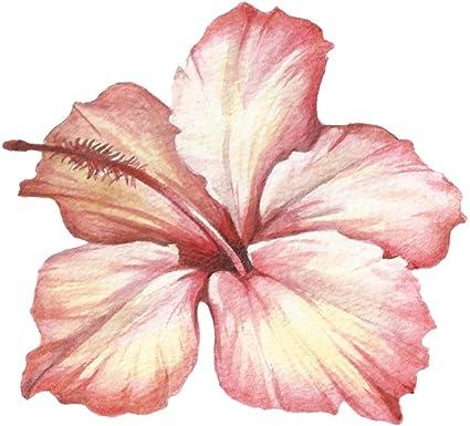 Amazoncom Beautiful Pink Watercolor Sketch Hibiscus Flower Art