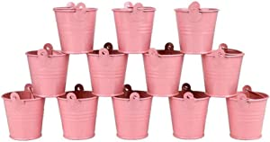 "LCJHOMTOO 12 Pack All-in-1 Tiny Metal Bucket with Heaght 2.1"" Candy Boxes Birthday Wedding Party Favours Gift/Serving Bucket Home Decor (Pink)"
