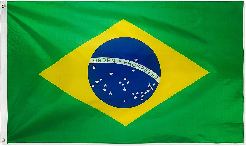 Ericraft Bandera de Brasil Grande 90x150cms Bandera brasileña balcón para Exterior Reforzada y con 2 Ojales metálicos, Bandera Tela Bandera Brasil: Amazon.es: Jardín