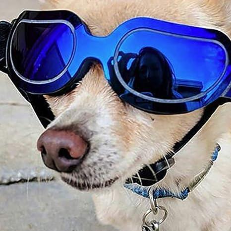 LHYL Gafas de Sol para Mascotas, Gafas de Sol Plegables para ...