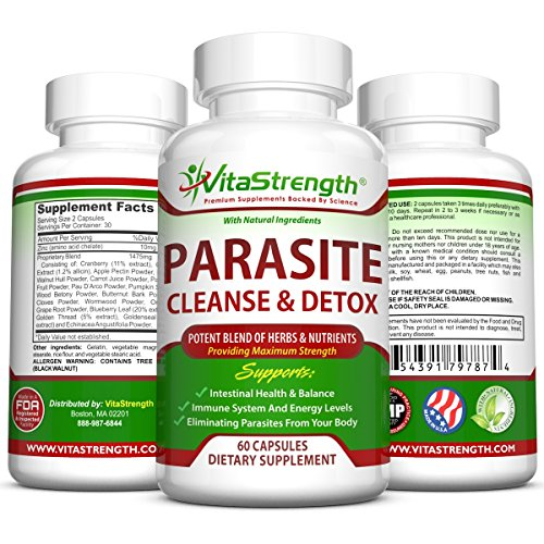 Best Natural Remedies For Intestinal Parasites