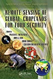 Remote Sensing of Global Croplands for Food Security